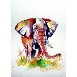 Walk alone - african elephant
