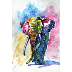 Colorful elephant III