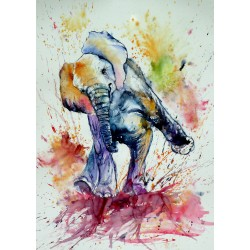 Playing elephant baby V