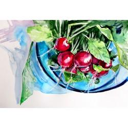 Still life with radish