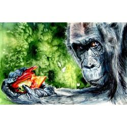 Chimpanzee eating