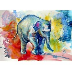 Elephant baby alone