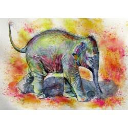 Elephant baby walk alone
