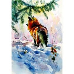 Red fox watching wintertime
