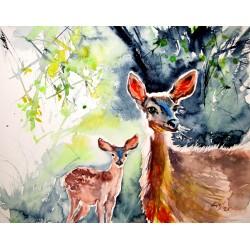 Deer in the sun II