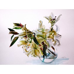 Bouquet of lily /Casa Blanca